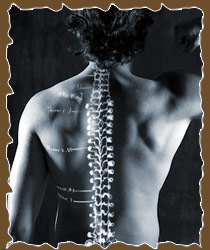 chiropractic_pic2